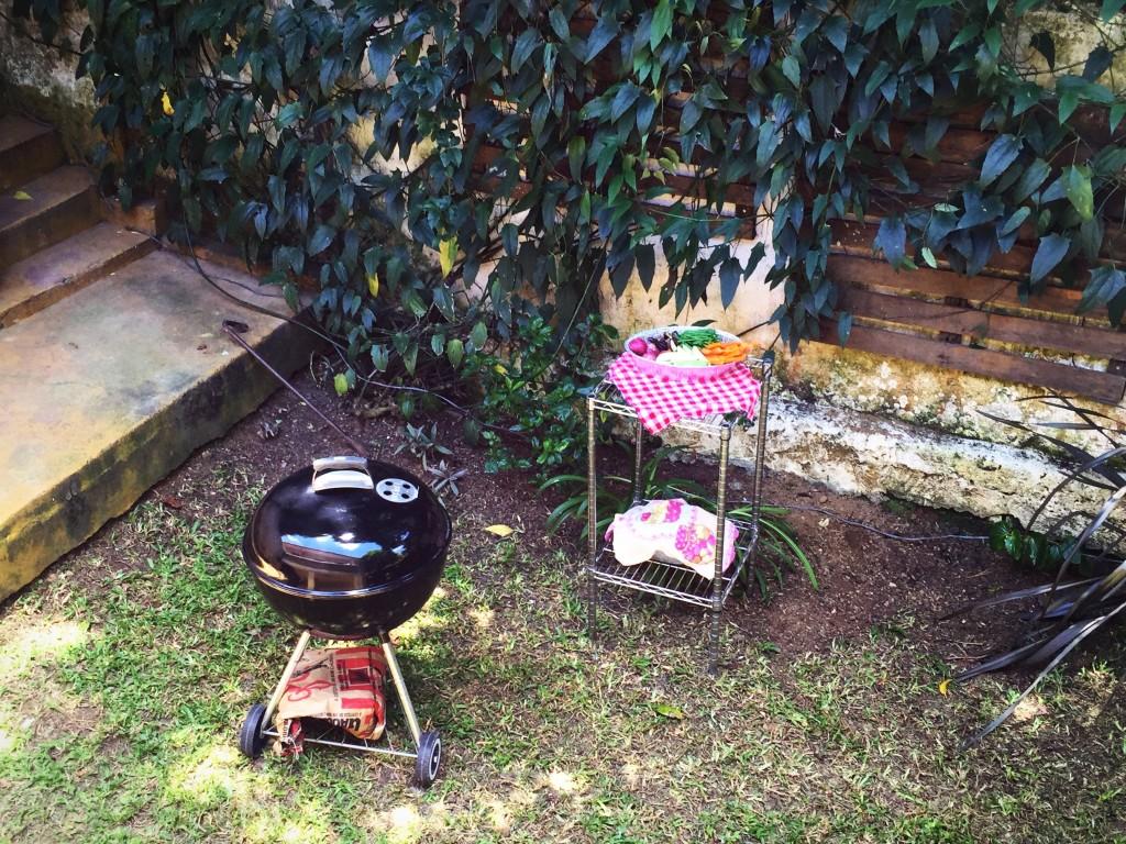 A churrasqueira e os legumes :)