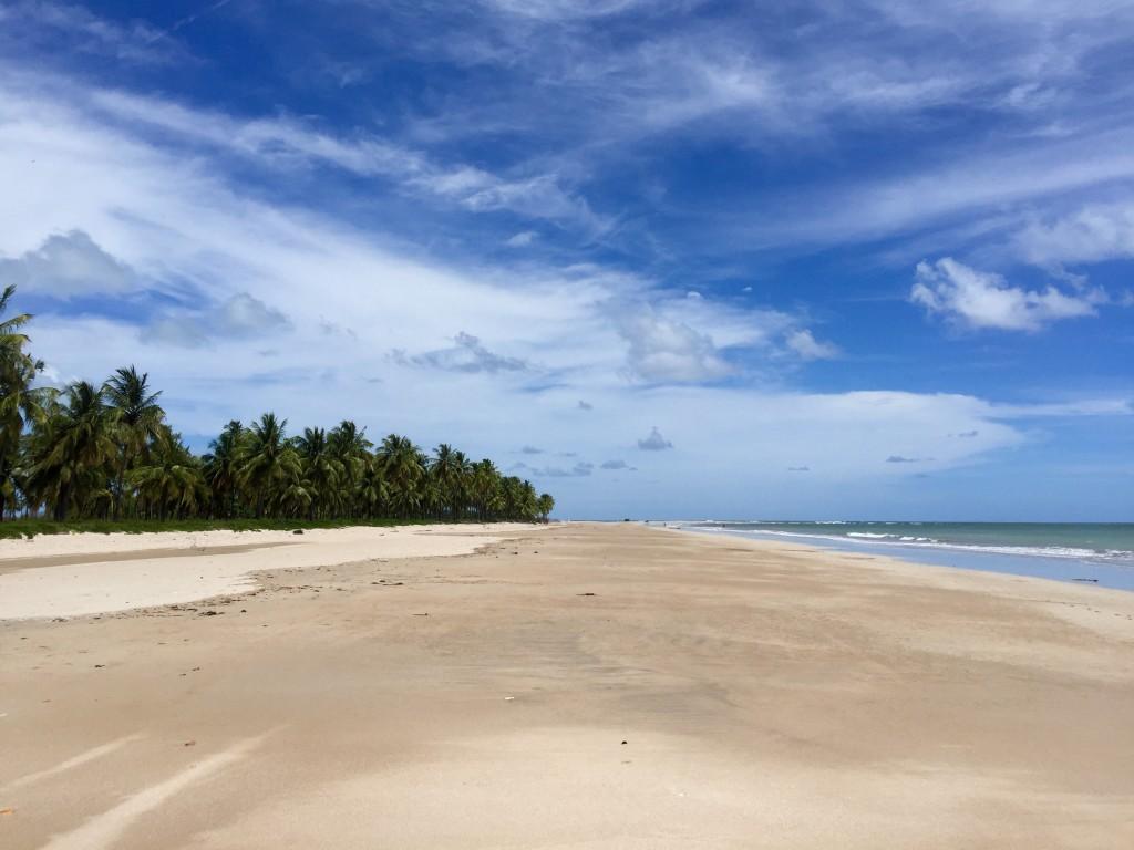 Outra praia que vale a pena conhecer: praia dos Morros. Mais reclusa, selvagem. Preciso pegar uma balsinha para atravessar e chegar na praia.