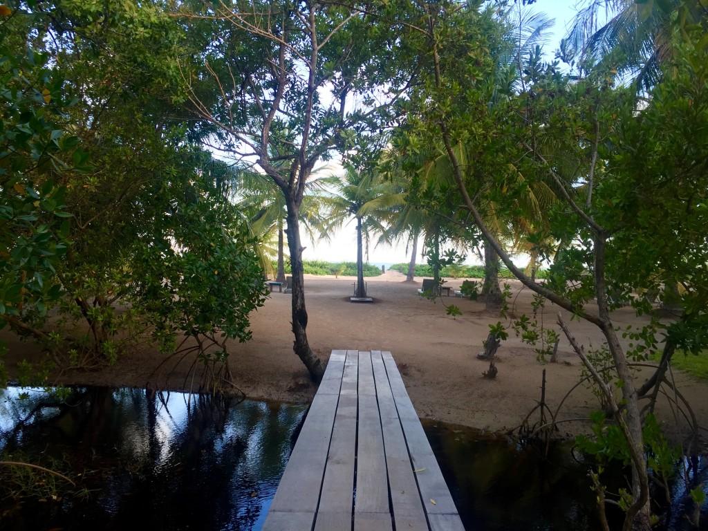 O caminho para a praia